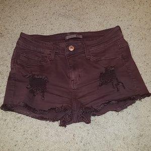 Distressed Burgundy/Merlot Shorts